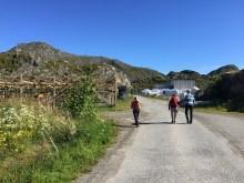 Towards the mountain!