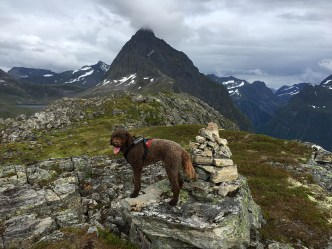On top of Maudekollen
