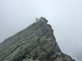 Back to the summit