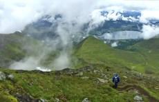 Descending Saudehornet