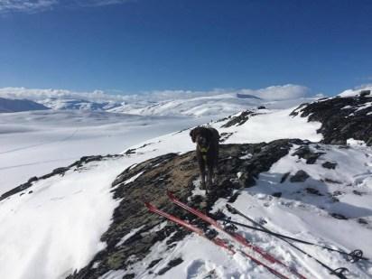 Anne took Karma on a ski-trip near Grotli, while...