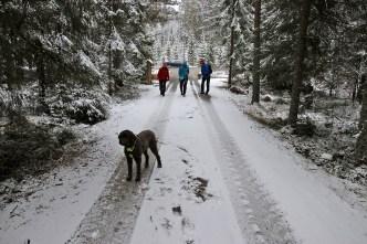 Heading for Storsvehøgda