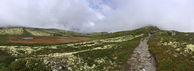 On the ridge to Svartfjellet (1/3)