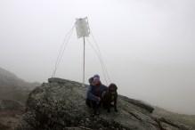 On top of Svartfjellet (1/2)