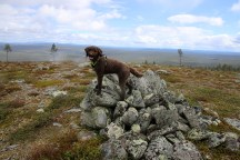 Karma on the Jyltingsvola cairn