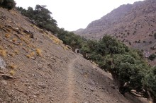 OK path