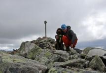 On top of Prestholtskarvet