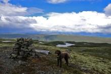 On top of Vedashøgde