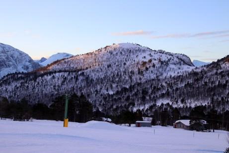 Next up: Nyfjellrørin