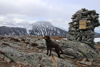 On top of Grøtshornet