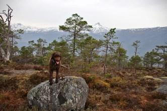 On top of Søråsen
