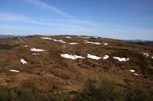 Towards Dyrefjellet and Flateheia