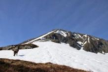 Heading up the ridge. It is steeper than it looks