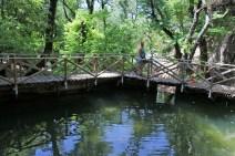 Around the dam