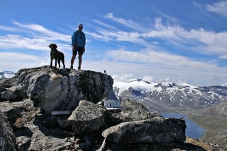 On top of Stavbrekknovi