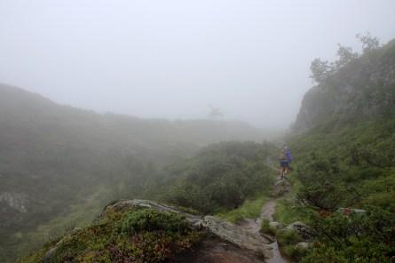 Into the rain and fog