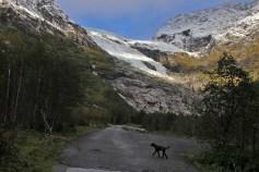 Below Bøyabreen glacier