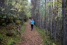 Nice path, nice day