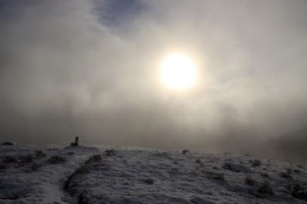 Still sunny, inside the fog