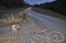 Getting on the bike