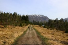 Returning to the trailhead