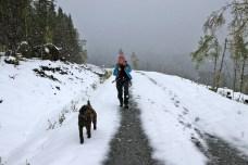 Into winter...