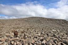 Steinheia summit ahead