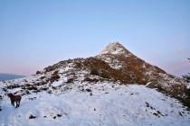The ridge to Storhornet