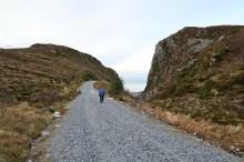 Descending the Sædalsvegen road