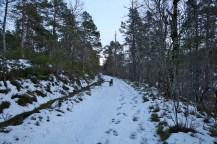 "Up ""Fjellvegen"""