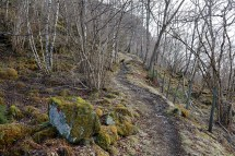 On the path upwards
