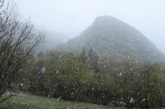 Then it began to snow