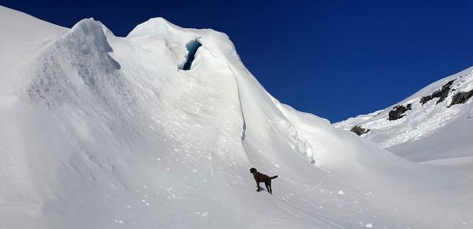 Anne-cam: Below Jostedalsbreen glacier (3)