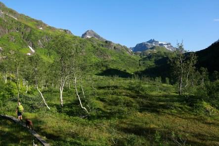 Making progress in Forkledalen valley