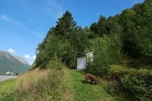 The trailhead at Steinnes