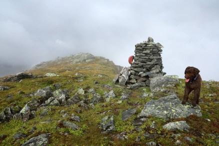 On top of Skoratinden, 1002m.