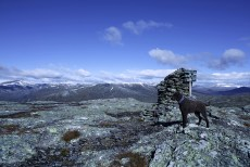 On top of Kinnfokfjellet