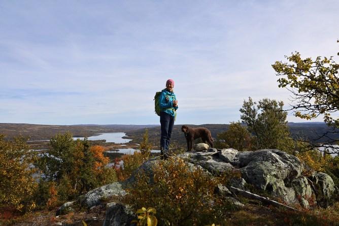 On top of Stakkestøhovda