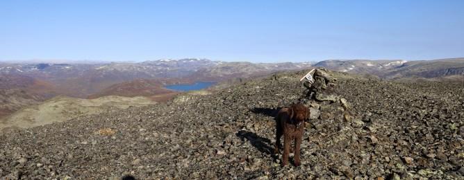 On top of Leinenøse