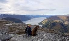 On Lingesetefjellet