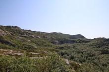 The ridge above us