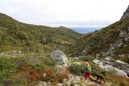 Descending Oksladalen