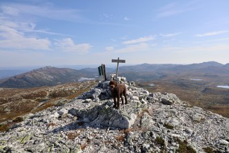 On top of Røysdalsnuten