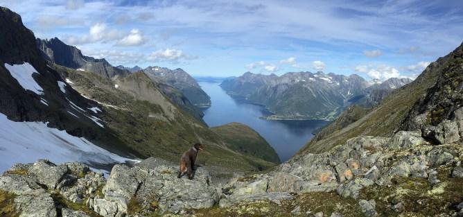 In the Kjerringøyra - Utolhornet saddle