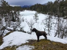 Karma on the Stedjeåsen high point