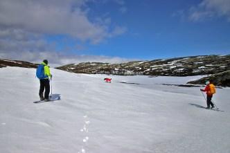 Approaching Sekstjønnin