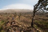 Otherworldly Mt. Cameroon | 1