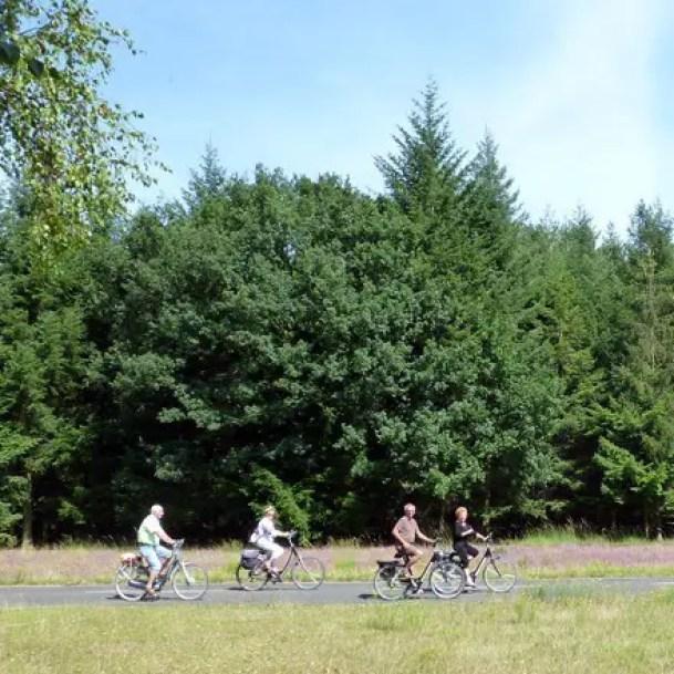 NiederRheinroute - Radwandernetz am Niederrhein - Flachshof Nettetal