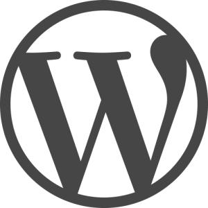 flag19 wordPress websites
