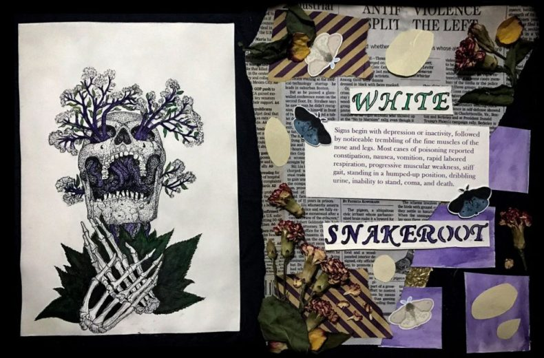"""""""White Snakeroot' by Sophia Young won the Mixed Media category."""